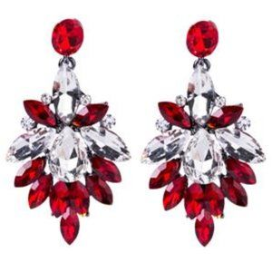 Silver Plated Alloy Red Earrings